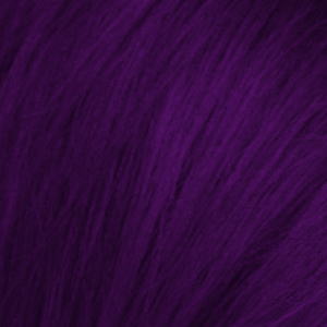 Photo of Manic Panic Deep Purple Dream