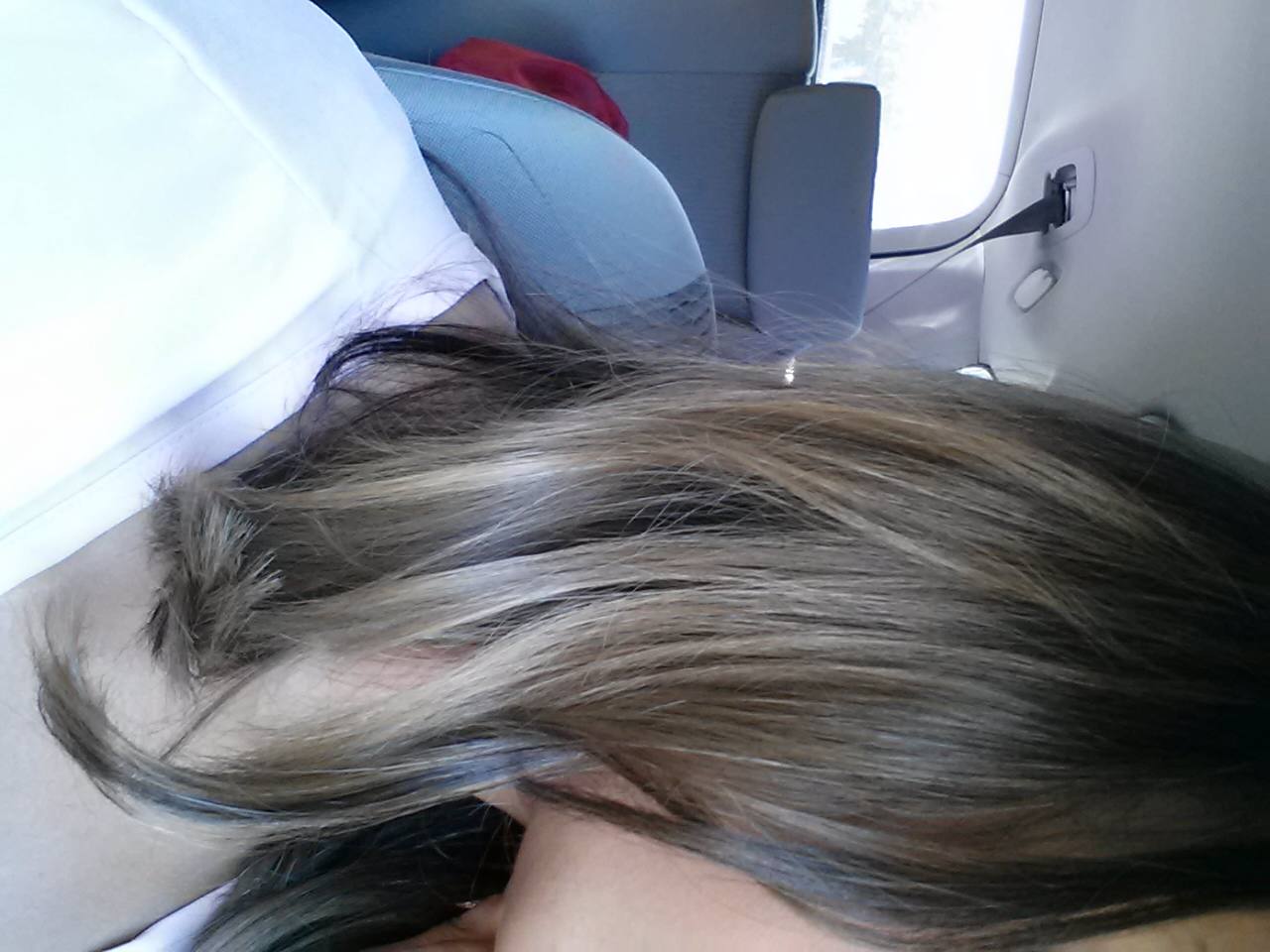 Trying to get back to the Salon colored Ash - Forums - HairCrazy.com