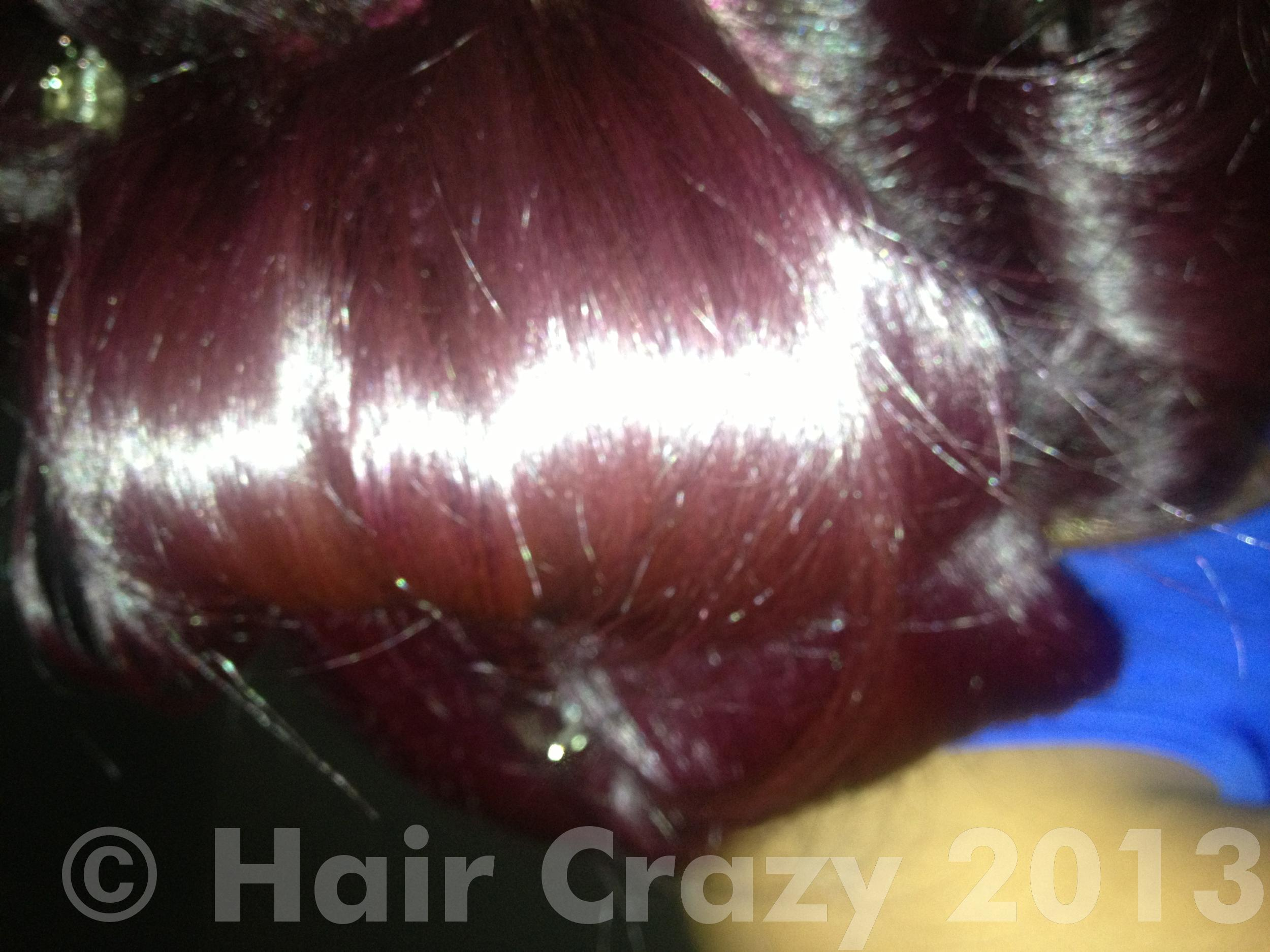 Ion Semi Permanent Hair Color With Developer Best Hair Color