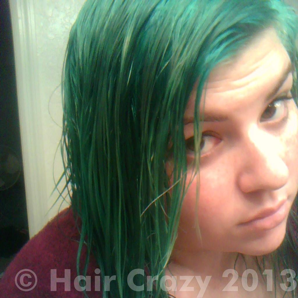 Help With Stripping Green Hair Forums Haircrazy Com