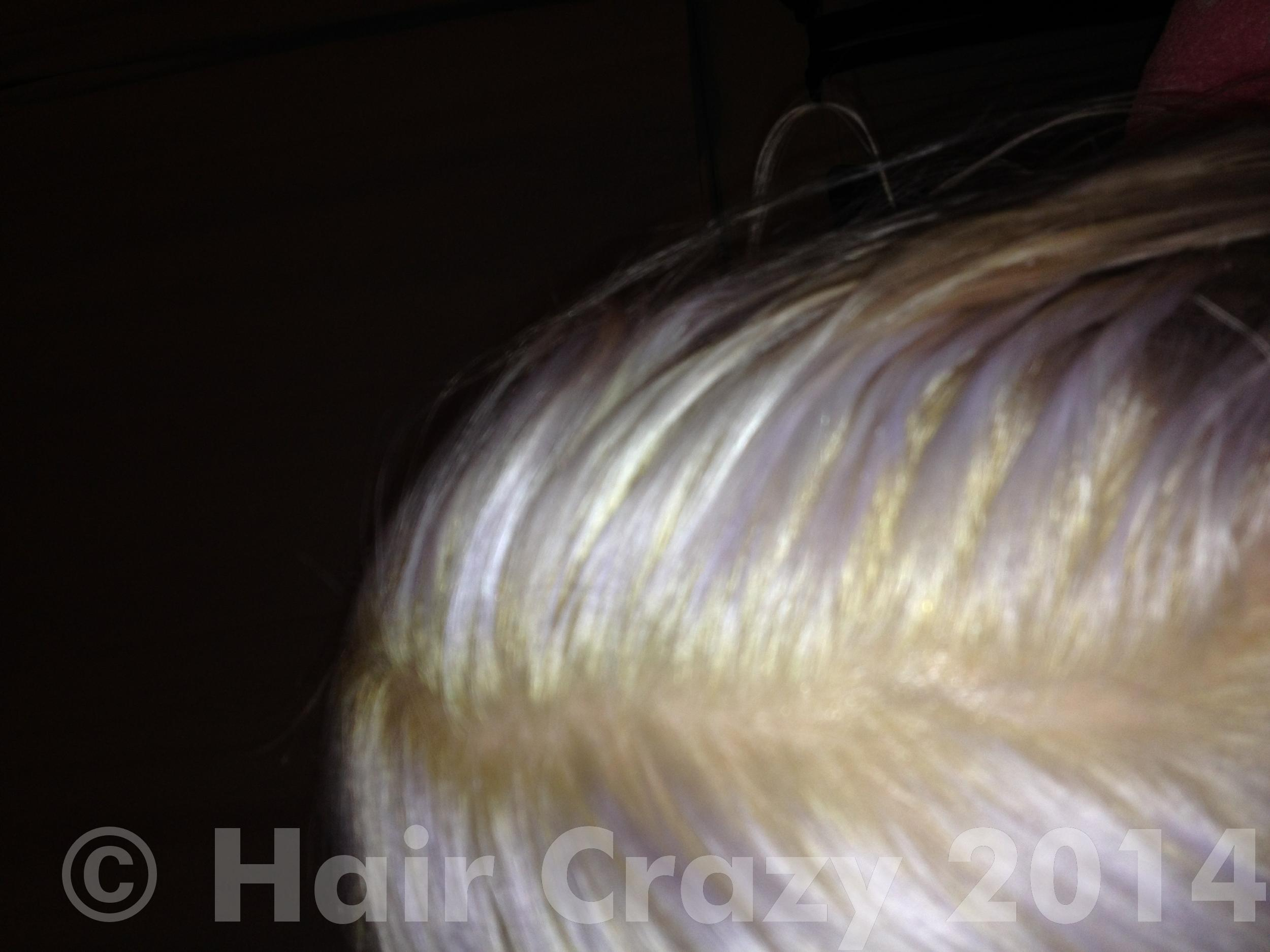 Freshly Bleached Roots Won T Take To Silver Toner
