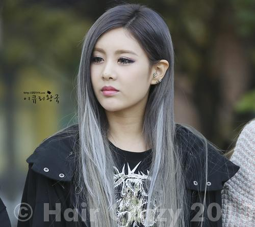 Ion Hair Color Gunmetal Grey