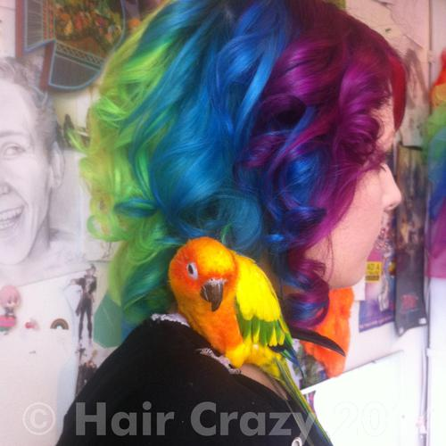 Lane using Manic Panic Electric Banana, Manic Panic Electric Lizard, Pravana Blue, Pravana Violet - 21st May 2014 4:58 a.m.