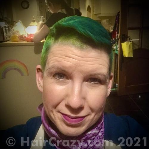 mummydactyl using Crazy Color Pine Green, Directions Ebony, Directions Spring Green, Manic Panic Electric Lizard - 10th January 2021 1:03 p.m.