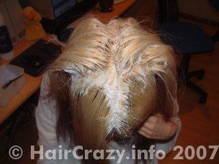 Hair was split into 4 parts to apply bleach
