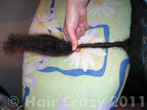 Secure your backcombed hair and begin twisting
